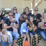 Big Dawgs foster families and the puppies the brought to our Dog Show. The pups are available for adoption!